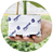 plantopgrodan-150x150.png