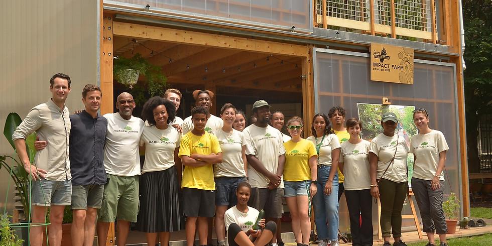 Tour of Harlem Impact Farm - A Vertical Farm & Food Hub (Extra)