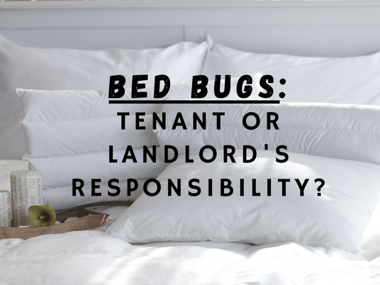 Bed Bugs : Landlord or Tenant's Responsibility?