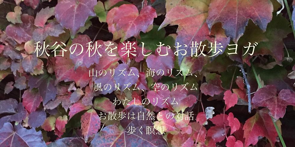 【秋谷の秋展】秋谷の秋を楽しむお散歩ヨガ