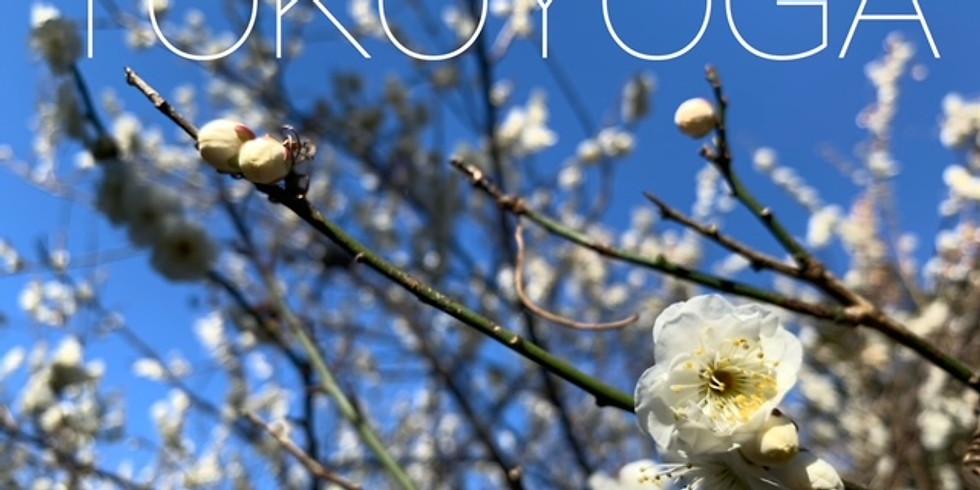【イベント】春を見つけるお散歩ヨガ