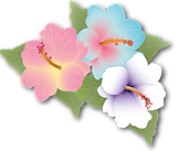 Malkiyah Hibiscus Logo_edited.png