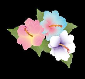 Malkiyah Hibiscus Logo.png