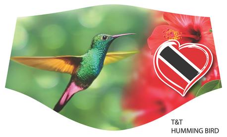 T&T Humming Bird.png