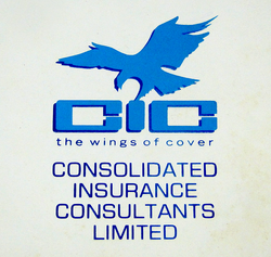 Consolidated Insurance Consultants