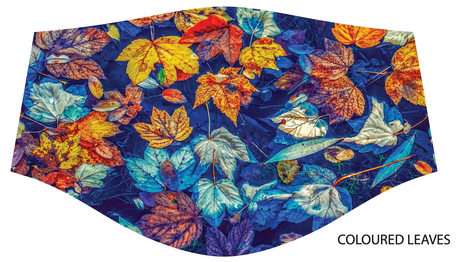 Coloured Leaves.png
