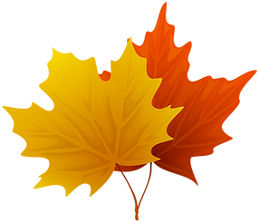Fall_Maple_Leaves_PNG_Decorative_Clipart