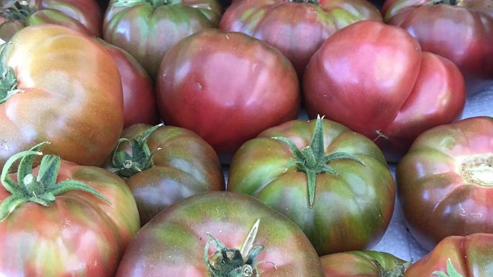 Tomatoes Mixed Heirloom