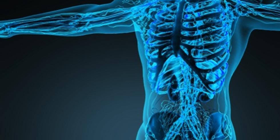 Engineering healthier bodies