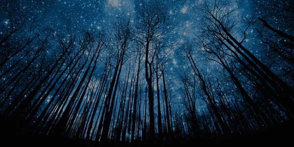 Een blik in het eindeloze heelal