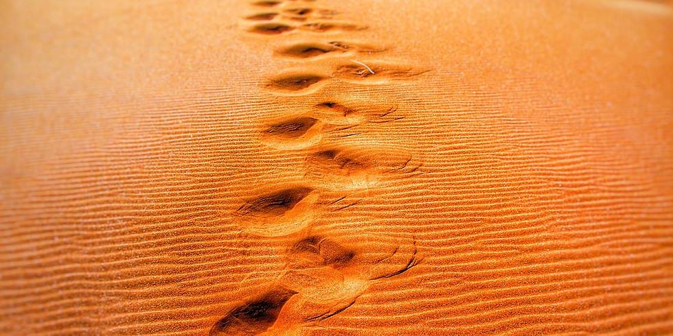 Kunstzinnige voetafdrukken