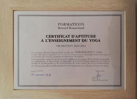 diplome-aptitude-ifybdf.jpg