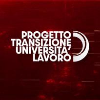 Progetto Transizione Università - Lavoro