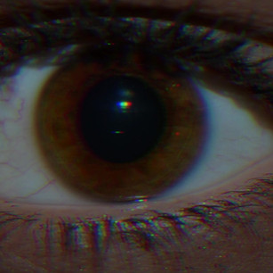 Insomnia, 2019