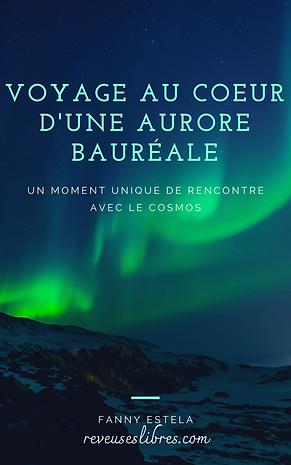 Voyage_dans_l'aurore_bauréale_(1).png