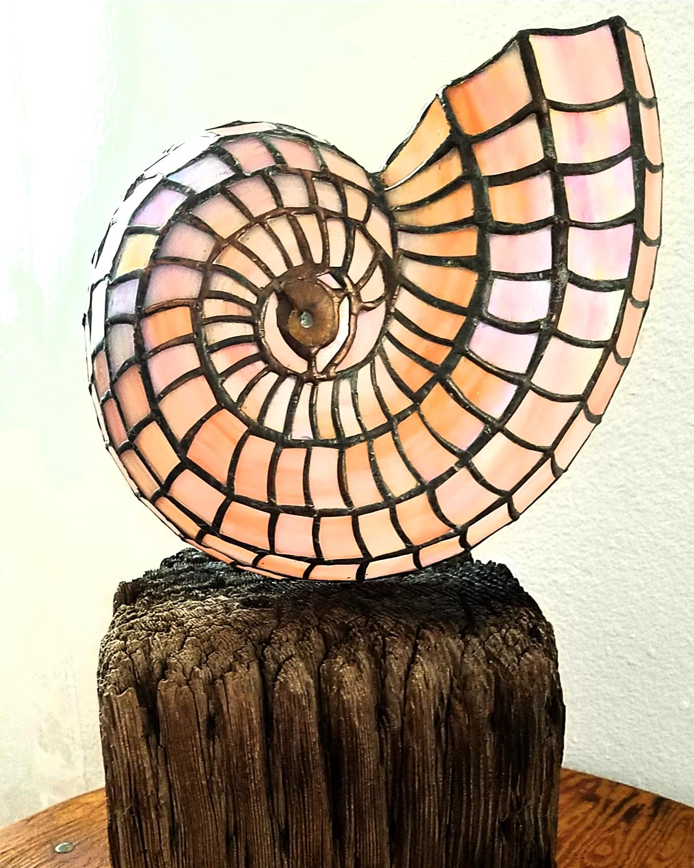 ammonite nautilus stained glass