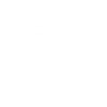 tt_emblem_C01_white_xtrasmall.png