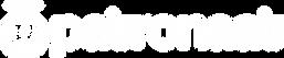 WIT-PATRONAAT-ENGEL.png