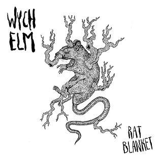 Wych_Elm_Front.jpg