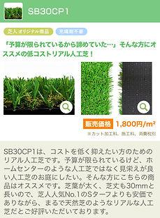 IMG-3611.jpg