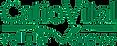 vital-logo.png