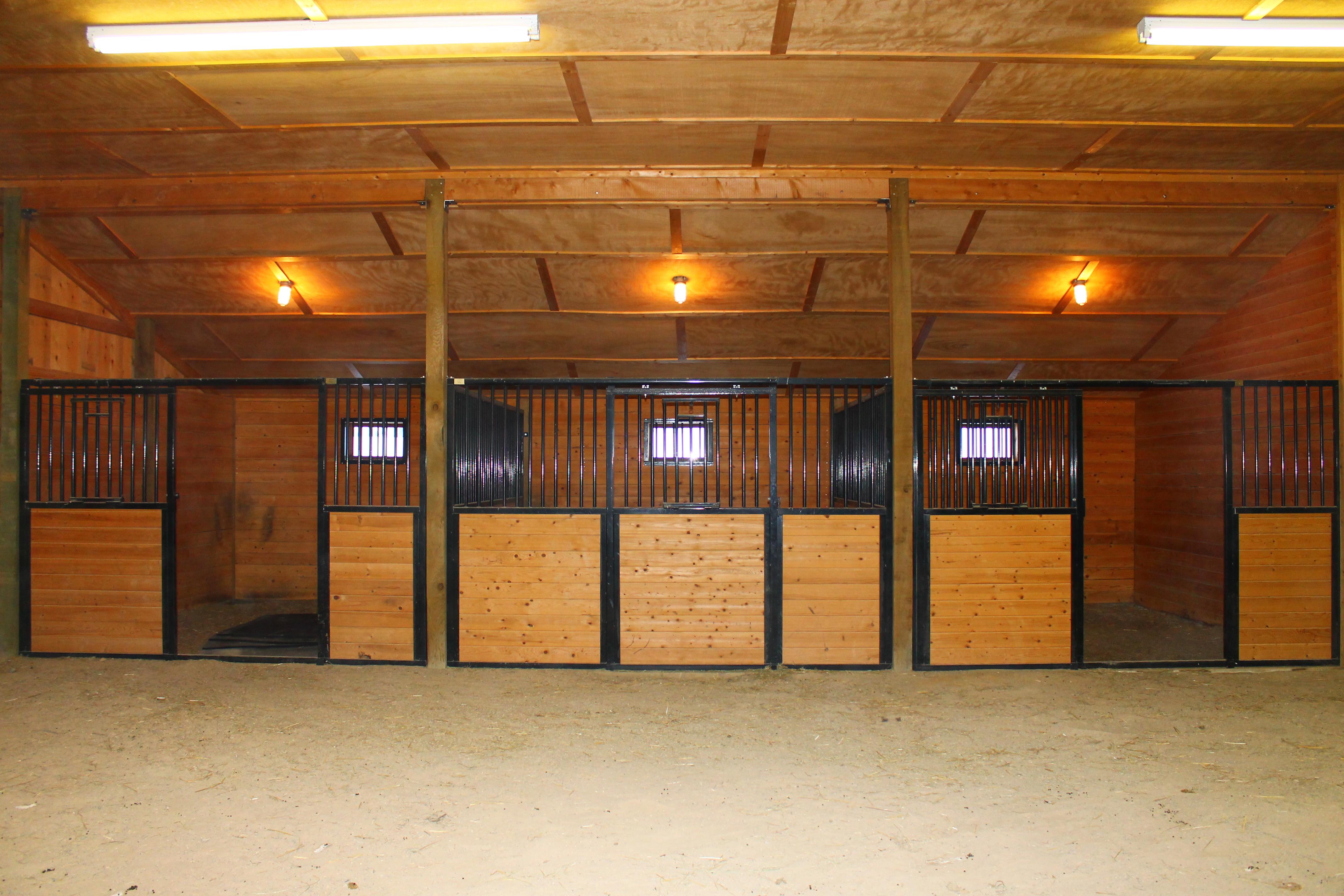 Stalls in Large Animal