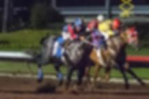Flay racing win.jpg