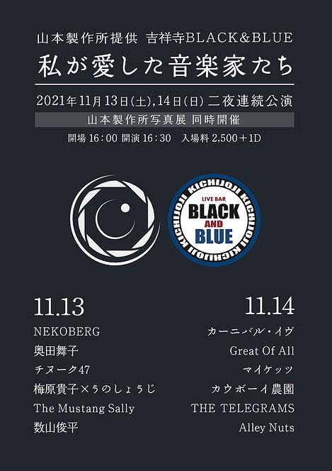 11月14日 フライヤー.jpg