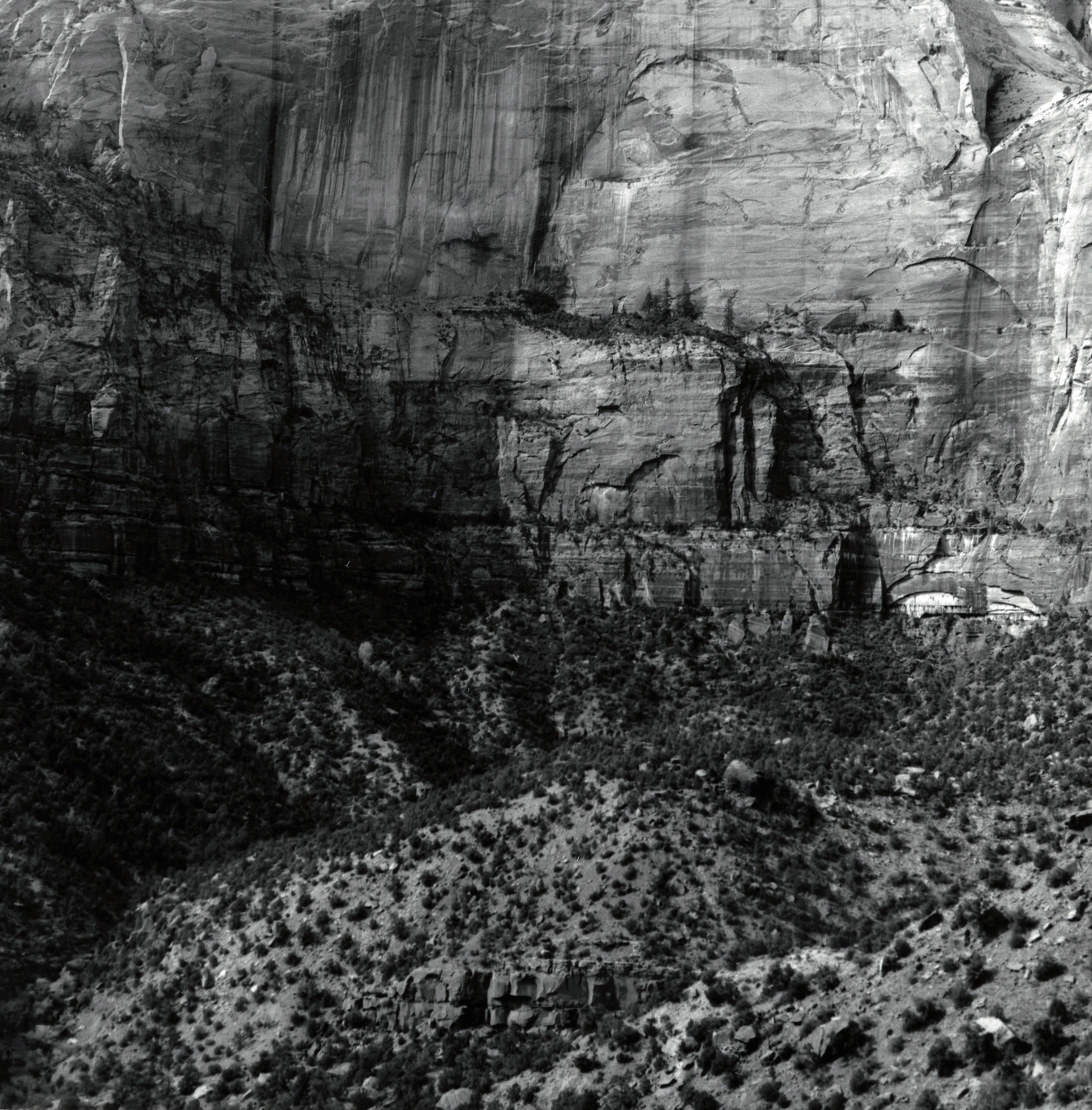 Canyon, Zion, Utah