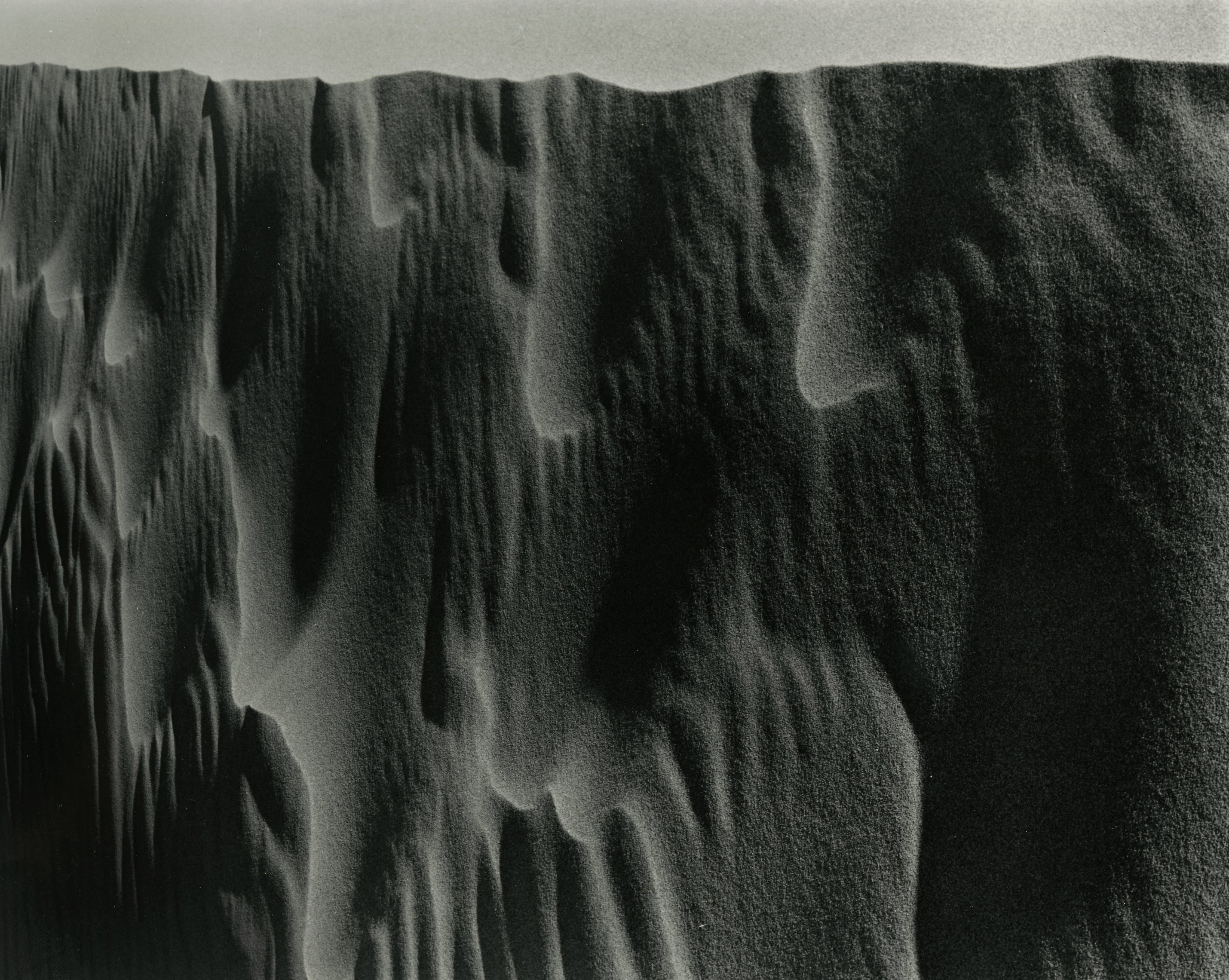 Dune #7, Colorado