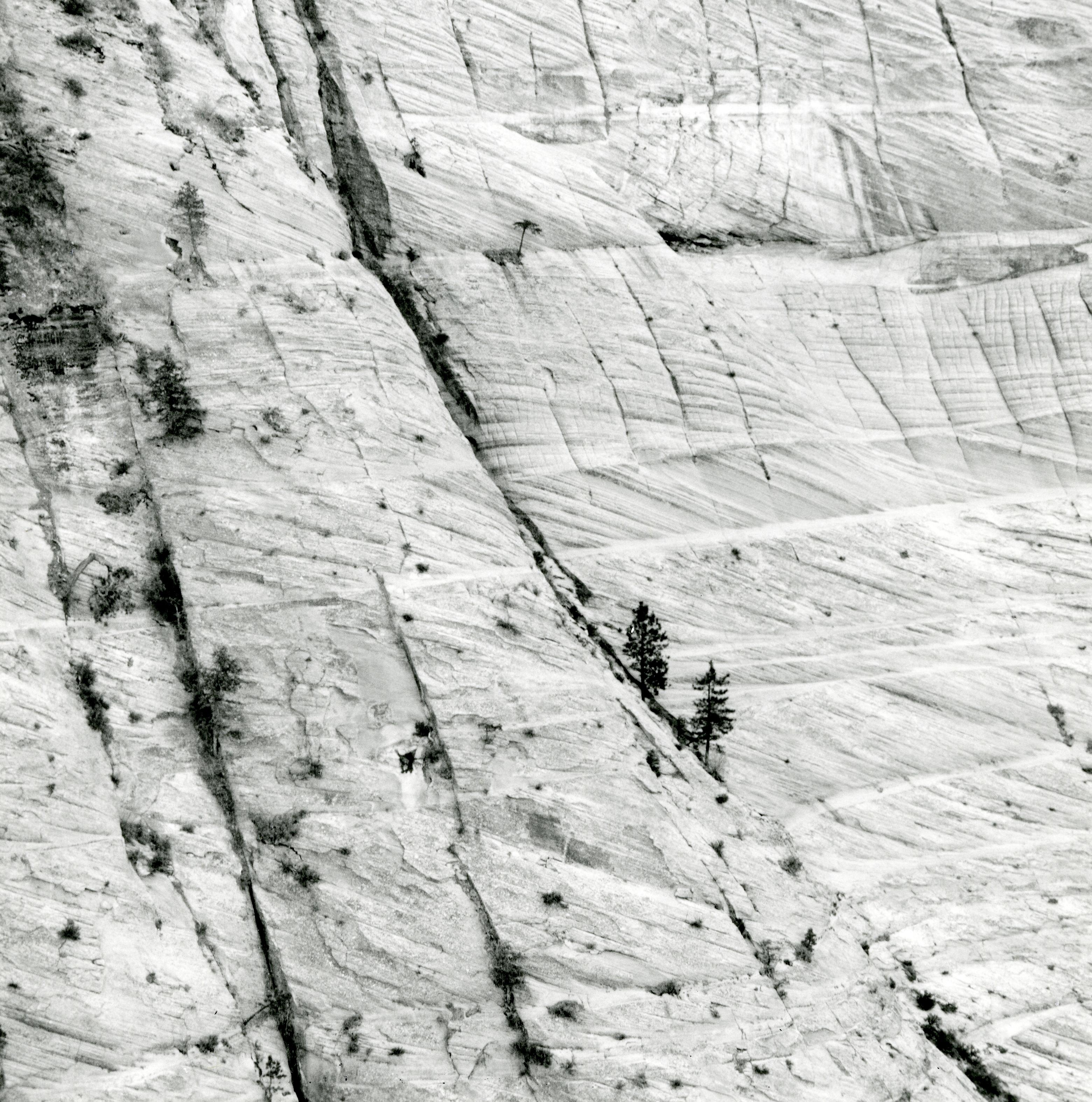 Navajo Cross Beds, Zion, Utah