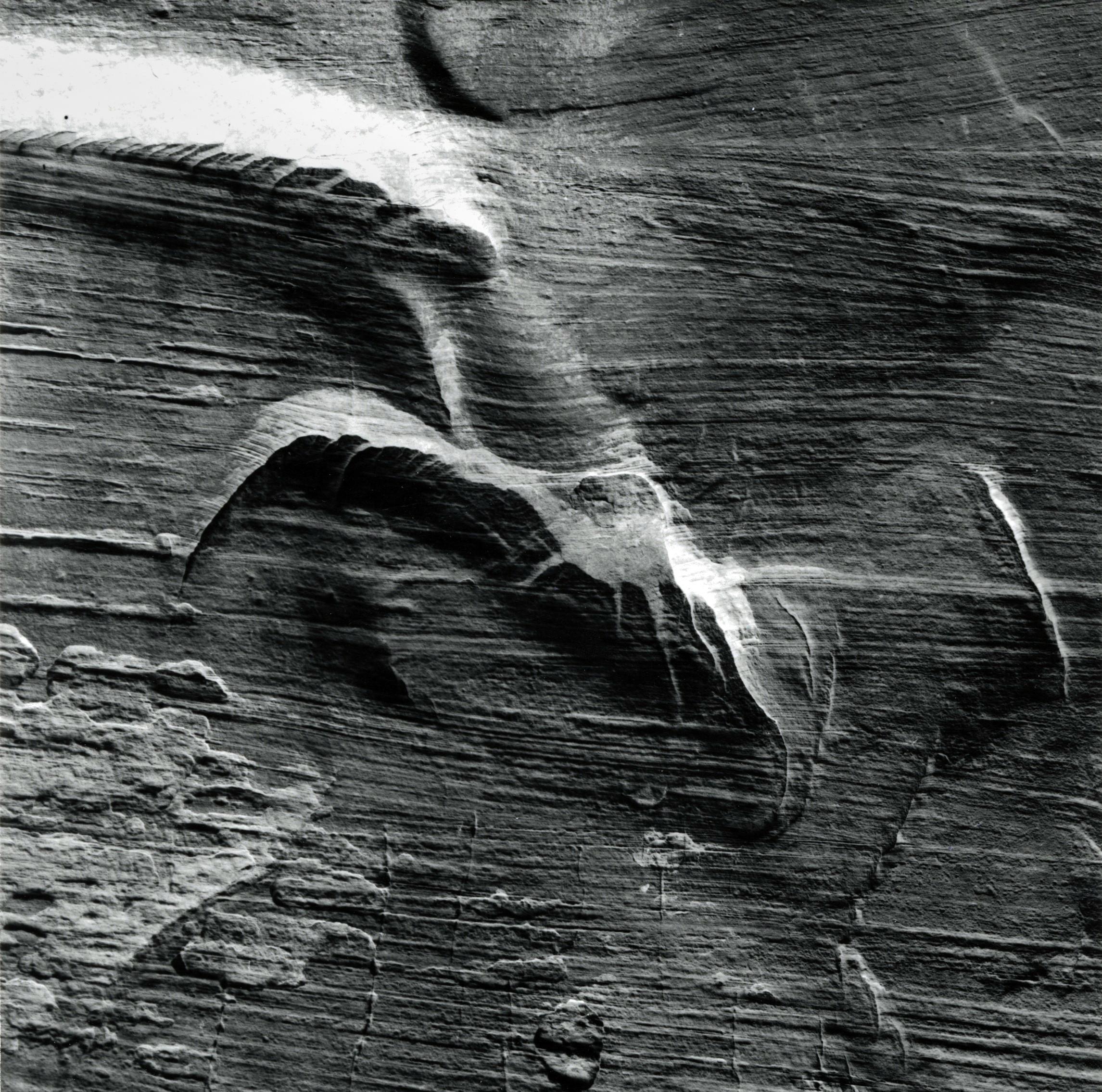 Wall Form, Zion, Utah