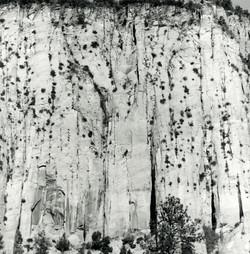 Wall, Navajo Sandstone, Zion, Utahn