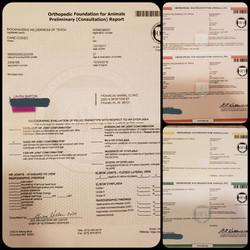 Tekoa OFA Certifications