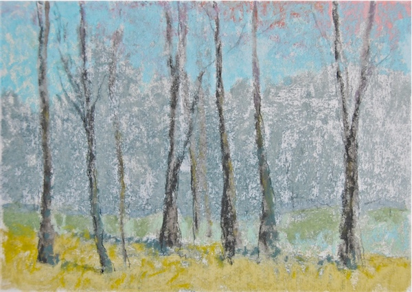 Trees Along the Meadow in Blue
