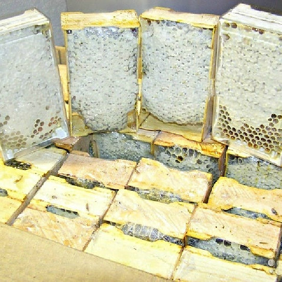 Мёд сотовый (в кедровой рамке)
