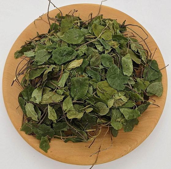 Боровая матка  (ортилия однобокая, рамишия однобокая) (трава)