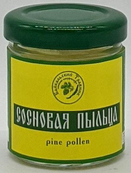 Сосновая пыльца