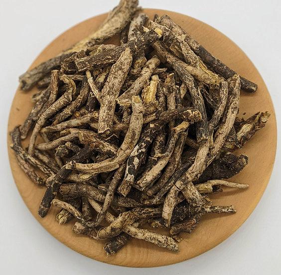 Вздутоплодник сибирский (корень)