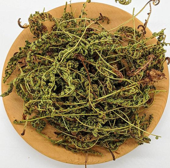 Щитовник пахучий  («каменный зверобой») (трава)