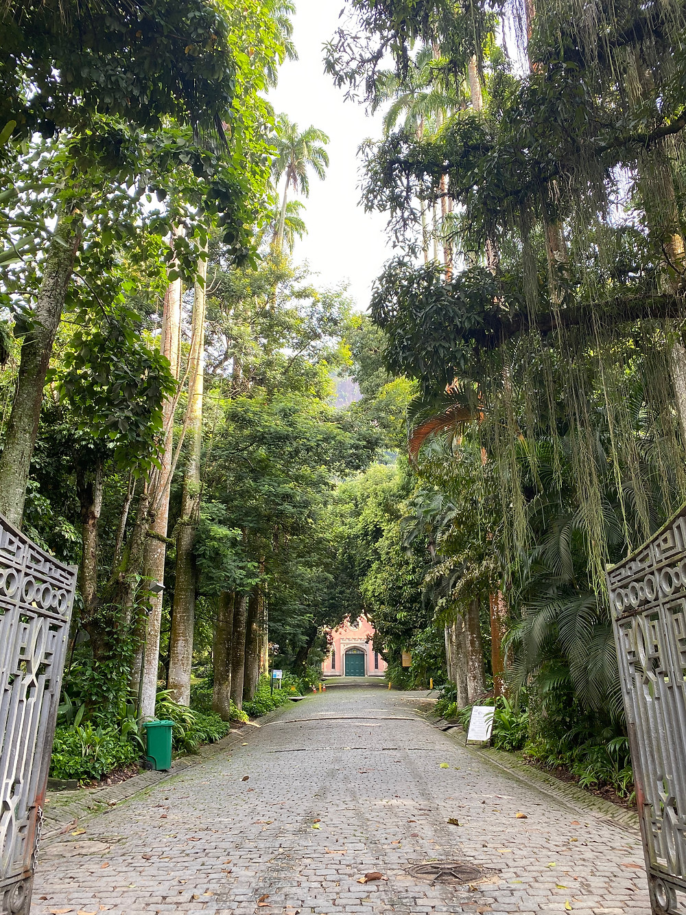 Parque Lage is a large park at the foot of Corcovado and offers astonishing viewpoints for great pictures.