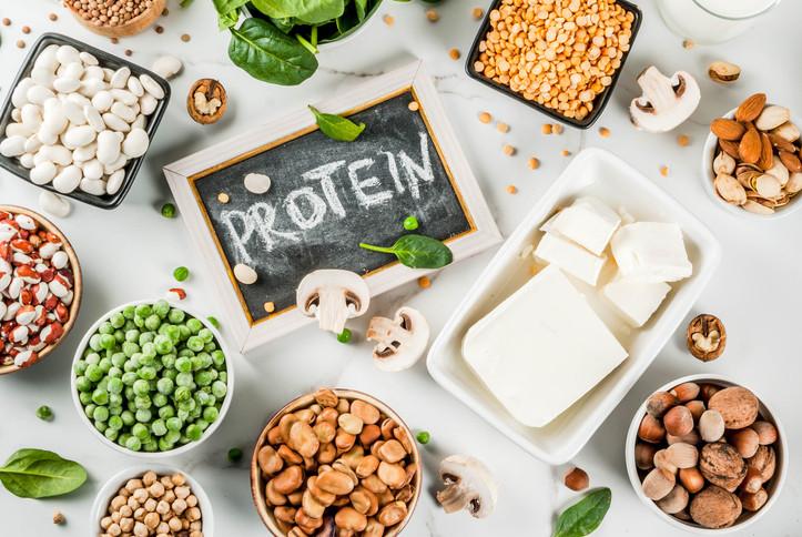 Plant Protein, Vegetarian Diet