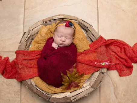 Mantua, NJ Newborn  Photography