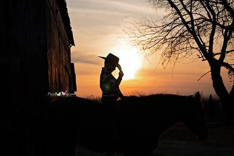 Equine Horse 5.jpg
