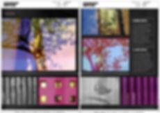 REFLEX AGOSTO 2 .jpg