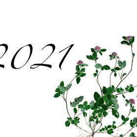 2021年カレンダー表紙 はがき