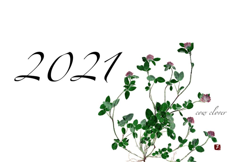 2021 葉書 00.jpeg
