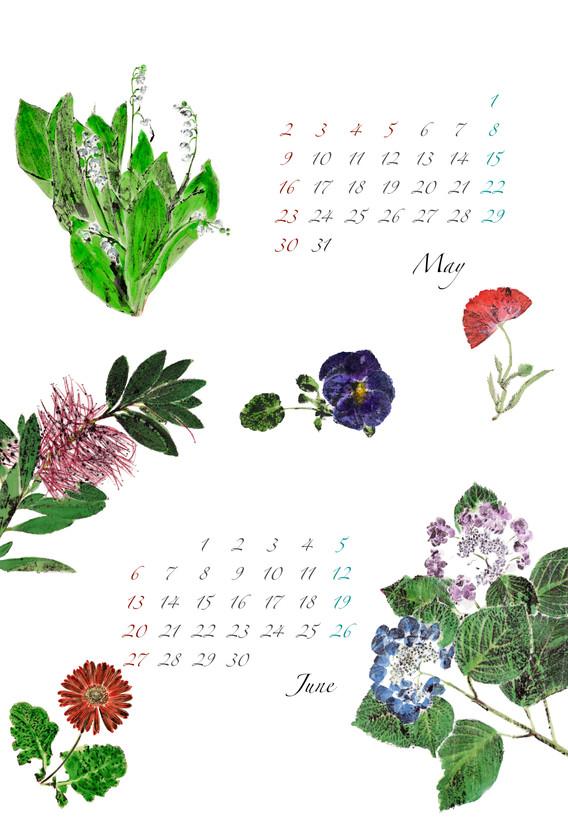2021 B5フォト和紙カレンダー5・6月