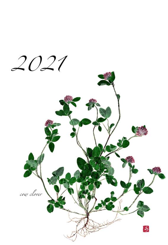 2021年 Entrance 表紙.jpg