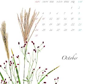 2021年カレンダー10月 A3